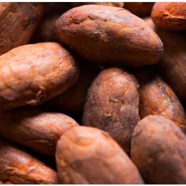 Какао-бобы, 1 кг Под заказ!